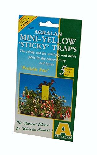 agralan-ha515-mini-sticky-traps-yellow
