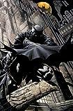 Image de Batman: Time and the Batman