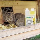Bio-Reiniger und Geruchsneutralisierer Probisa Micro-Vet 813 für Hund - 6