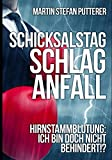 Schicksalstag Schlaganfall - Vers. B: Hirnstammblutung - Ich bin doch nicht behindert!? - Hydrocephalus - Martin Stefan Putterer