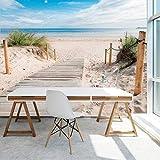 murimage Carta Parati Spiaggia Mare 3D 366 x 254 cm Include Colla Dune Oceano vacanza percorso in legno Wallpaper Fotomurali