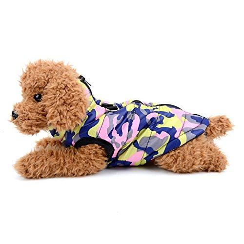 SMALLLEE_LUCKY_STORE BFL081-Pink-S- Arnés perro pequeño