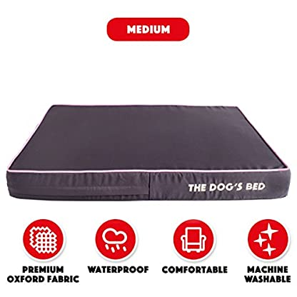 The Dog's Bed, Premium Orthopedic Waterproof Memory Foam Dog Beds, 5 Sizes/7 Colours: Eases Pet Arthritis, Hip Dysplasia… 5