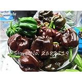 100% auténticos frescos orgánicos Habanero semillas de pimienta chocolate Raras (chile picante) Verduras picantes por un jardín de la planta sana - 150 PC 3