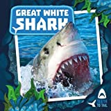 Best White Teeths - Great White Shark (Teeth to Tail) Review