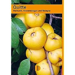 Quitte: Herkunft, Anwendungen und Rezepte