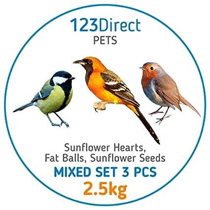 2.7 Kg – 3 in 1 Set misto Miscela di semi per uccelli selvatici di alta qualità per il giardino | Semi di girasole di alta qualità + Arachidi di alta qualità + Semi di girasole pelati di qualità