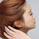 Srovfidy Femme élégante Argent sterling S925Boucles d'oreilles Sparkling Créoles boucles d'oreilles, Acier inoxydable, Silver, Taille unique
