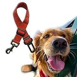 Hemore Sicherheitsgurt für Auto, Extensible Bungee & Nump Verstellbare Schnalle Nylon mit Doppelgriff Leine Stoßen Geeignet für alle Hunderassen