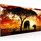 Bilder Afrika Sonnenuntergang Wandbild Vlies - Leinwand Bild XXL Format Wandbilder Wohnzimmer Wohnung Deko Kunstdrucke Rot 1 Teilig -100% MADE IN GERMANY - Fertig zum Aufhängen 001512a