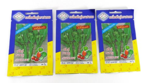 thai-3-a-brand-chinese-kale-2050-seeds10g-x-3-pack