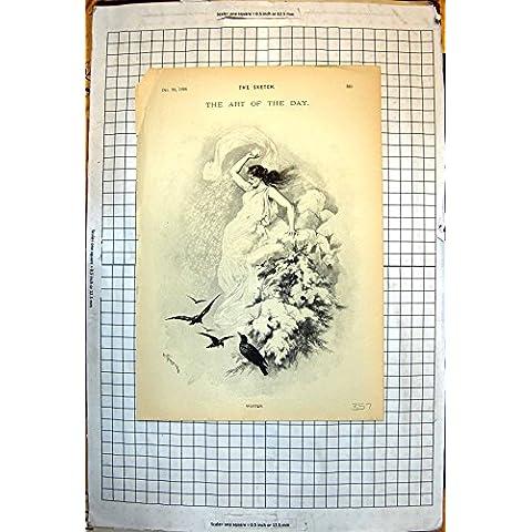 Impresión Antigua del Frunce 1896 de Señora Casting Snow Down Birds de la Parte Superior del Árbol del Invierno del Día del Arte