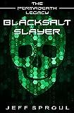 Blacksalt Slayer (The Permadeath Legacy)