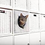 Trixie Katzenhöhle für Regal