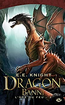 Dragon Banni: L'Âge du feu, T3