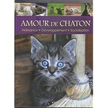 Amour de Chaton : Naissance, développement, socialisation