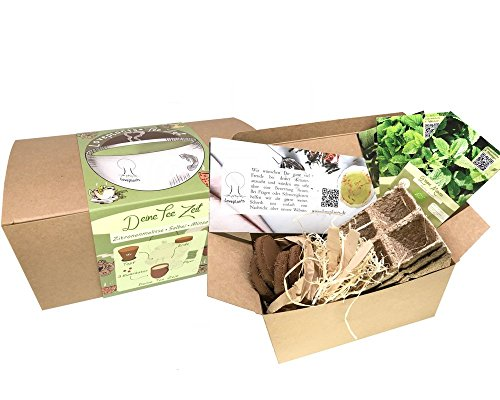 Geschenk Anzuchtset, Bio Tee Kräuter Pflanzset mit 3 Sorten Kräuter Samen, wie Grüne Minze, Salbei und Zitronenmelisse, Geschenk Set zu jedem Anlass, ideales Tee Geschenk für Frauen und Männer Garten Tee-set