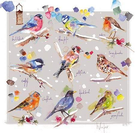 Almanac ALM-ALCX0453 Weihnachtskarten für Wohltätigkeitsorganisation, Aquarell, Wintervögel, 8 Stück