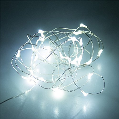 lychee-7ft-2m-micro-20-led-waterproof-battery-ultra-thin-silver-copper-wire-operated-fairy-string-li