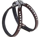 Garronda Hundegeschirr aus weichem Leder 624+ (Braun/Schwarz, M (40 cm))