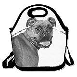 Die besten Boxer Totes - Boxer Dogs Insulated Lunch Bag - Neoprene Lunch Bewertungen