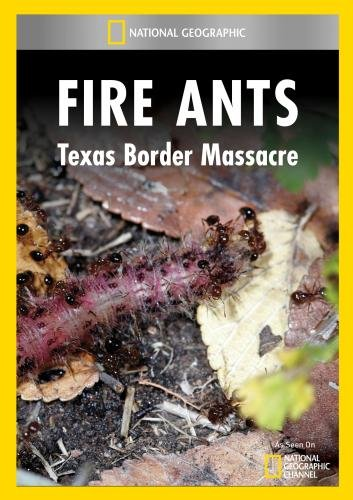 fire-ants-texas-border-massacre-dvd-region-1-us-import-ntsc