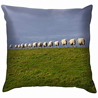 vintage cap Sheep Ameland Animals Wildlife Nature Throw Pillows Covers Accent Home Sofa Cushion Cover Pillowcase Gift Decorative 18X18 Inch