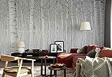 Vlies Fototapete Fotomural - Wandbild - Tapete - Birken Trunk Wald Nebel - Thema Wald und Bäume - XL - 368cm x 254cm (BxH) - 4 Teilig - Gedrückt auf 130gsm Vlies - 1X-1326039V8