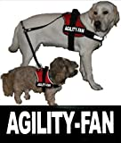 AGILITY-FAN - 2x Large velcro labels (5x16 cm) / substitution logos / large white reflecting for Julius K9 Power + IDC harness