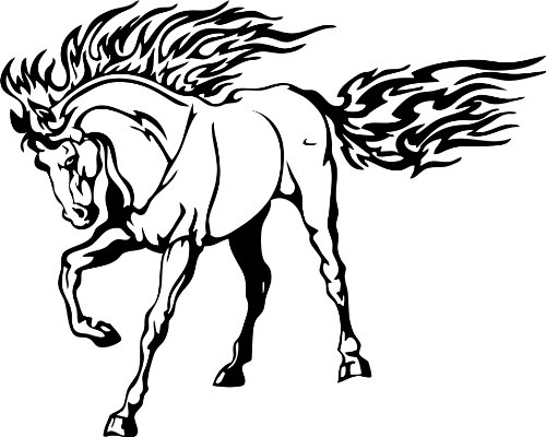 Preisvergleich Produktbild Wandtattoo Bild Türaufkleber Tattoo Pferd 2 ca. 55x45cm NB-0070