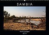 """Sambia """"Das wirkliche Afrika"""" (Wandkalender 2019 DIN A2 quer): North Luangwa ein wildes Naturerlebnis. (Monatskalender, 14 Seiten ) (CALVENDO Natur) - Udo Quentin"""