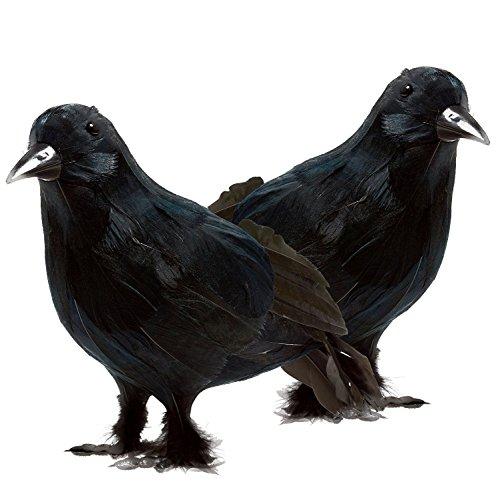 prextex realistisch Halloween Dekoration Birds schwarz gefiederten Crows Halloween Prop Décor (2er (Prop Crow)