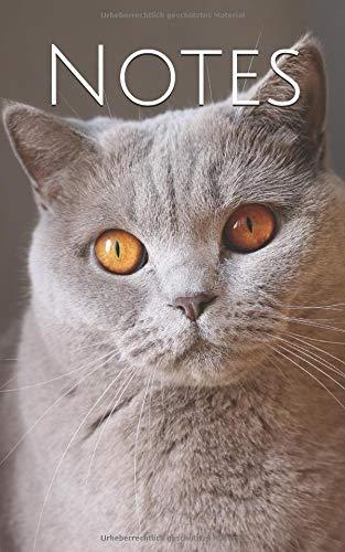 Notes: Katze Bernstein Augen | liniert |130 Seiten | Softcover | 5x8 Zoll (etwas kleiner als DIN A5)