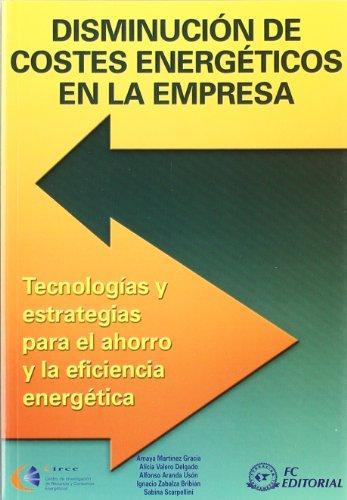 disminucion-de-costes-energeticos-en-la-empresa
