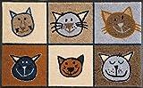 Fußmatte / Fussmatte / Fußabstreifer / Fußabtreter / Fussabstreifer / Fussabtreter / Schmutzmatte / Sauberlaufmatte / Türfussmatte / Türmatte / Schmutzfangmatte / Matte / Schmutzmatte / robuste Fußmatte / Abstreifer / Schuhmatte / Schuhabtreter / Miau Miau - braun - Katzen - Katze Größe : 50 x 75 cm / Luxus hochflor / Fußmatte / Türmatte / Angenehmes Laufgefühl / flexibel einsetzbar / Rutschfest / repräsentative Fußmatte für Eingangsbereiche / ideal auch für Ihre Terasse