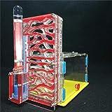HeyBob Design Fai da Te con Zona di Alimentazione formicaio Formica Fattoria Insetto Formica nidi Villa Pet Mania per formiche domestiche,Rosso