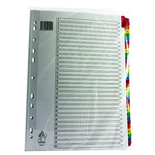 Rexel Mylar Separatore per File A4 1-31 Multi - Arch Binder