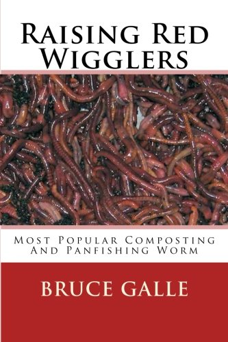 Raising Red Wigglers: Most Popular Composting And Panfishing Worm