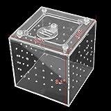 sourcingmap® 3.1×3.1×3.1Zoll Klar Acryl Gebaut Fütterung Kasten Kriechtier Reptil Haus - 2