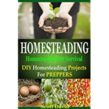 Homesteading: Homesteading For Survival: Homesteading Projects For Preppers (English Edition)