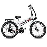 dme bike Fat-Bike Bicicletta Elettrica Pieghevole 24' 250W V3.1 Chrispa Fat Bianca