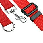 Katomi Dog Pet Puppy Training Obedience Lead Leash (1.8m*2cm, red) 9