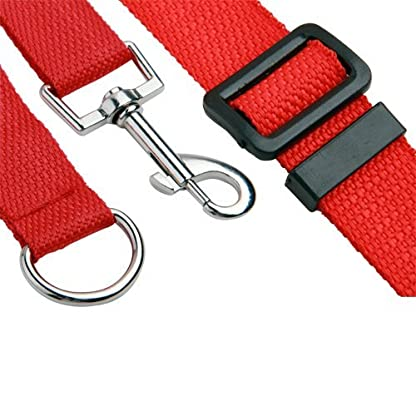 Katomi Dog Pet Puppy Training Obedience Lead Leash (1.8m*2cm, red) 4