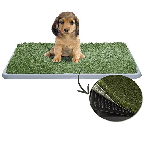 lettiera-maxi-per-cucciolo-con-erba-sintetica
