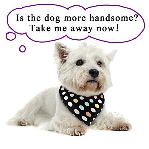 Poppypet Halstücher für Haustier, Mode Design Halstuch für Hunde oder Katzen, Hunde Bandana Bequeme Stoffe Haustier Schal Punkte Muster 29cm- 48cm Verstellbare Schwarz - 2