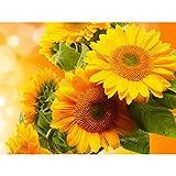 Pretty Sonnenblume Blätter Diamond Malen nach Zahlen 5D DIY Stickerei Gemälde Full Diamant Rund handgefertigt Naht Wandbild Home Craft Nähen & Craft Wand Decor, Größe S