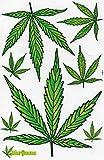 Reggae Cannabis Hoja Racing Decal Sticker Tuning Racing Tamaño: 27 x 18 cm para el coche o la moto