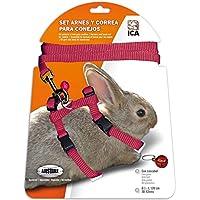 ICA DA1025 Set de Arnés y Correa para Conejos, Rojo