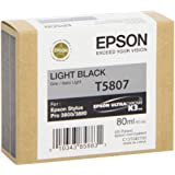 Epson Ink Cartridge 80ml - Light Black