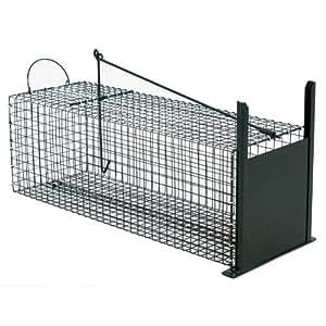 trappola cattura animali vivi trappola a cassetta per gatti conigli ratti volpe 60 cm. Black Bedroom Furniture Sets. Home Design Ideas